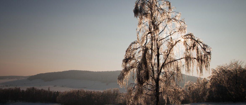 koenigshainer-berge-winter
